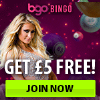 Bgo Bingo are offering shares of £5 million to players this Christmas